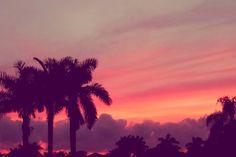 Sunsets..