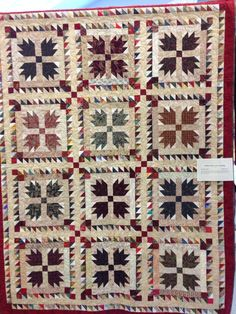 Love me some bear paws! Beautiful quilt shown at Burlington Quilt Guild show October 2014.