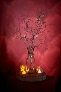 I choose simple trees to enhancer the theme in the ceremony area #woodswedding #ceramonydecor