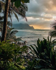 """🌧🌲Stefan Elmer🌴☀️ on Instagram: """"NUMBER 3 // A photo that can transport me back to Kauai every time I look at it. We have this one as a huge print in our living room for…"""" Bora Bora, Oahu, Kauai Hawaii, Places To Travel, Places To Go, Travel Destinations, Famous Places In France, Beach Pink, Beautiful Ocean"""