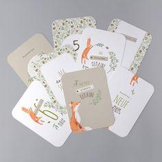 Cartes Étapes BébéBC01-004