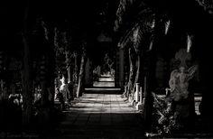 ♫ K. Jenkins, Requiem - Lacrimosa  Gruppo sul Cimitero Monumentale di Bonaria Gruppo Facebook sul Cimitero Monumentale di Bonaria