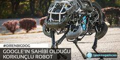 Google'ın sahibi olduğu korkunçlu robot