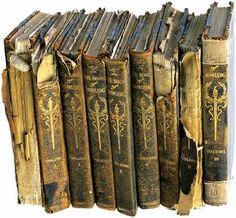 """Médicoanimósico: Bíblia """"Sagrada"""" - A Grande Fraude Milenar - O Oráculo da Manipulação"""