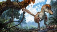 «Невероятно, но факт»: ученые разгадали загадку пернатых динозавров по фрагменту в янтаре http://joinfo.ua/curious/1189721_Neveroyatno-fakt-uchenie-razgadali-zagadku.html  О том, что в янтаре могут встречаться в незапамятные времена увязшие в древесной смоле насекомые, известно многим. А в Мьянме в куске янтаря обнаружили фрагмент хвоста динозавра.«Невероятно, но факт»: ученые разгадали загадку пернатых динозавров по фрагменту в янтаре, подробнее...