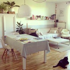 Light, furniture