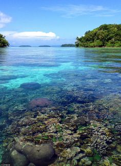 Snorkelling spots like this one at Marovo Lagoon have turned the Solomon Islands into an e...