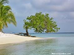 playas de Morrocoy proximamente informacion de morrocoyonline.com