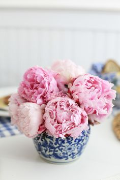 Peonies are such a pretty flower! And especially when they are pink! My Flower, Fresh Flowers, Beautiful Flowers, Pink Flowers, Cactus Flower, Exotic Flowers, Yellow Roses, Pink Roses, Arrangements Ikebana