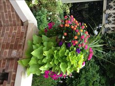 Geranium112. Different ideas for containers.  Garden Lover's Club
