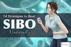 14 strategies to beat SIBO naturally