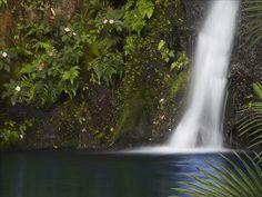 ~Aloha Falls~