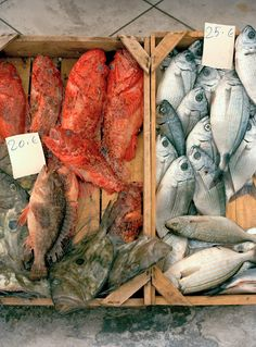 """sinuous_shapes"" - summer 2015 mood #mediterranean #food"