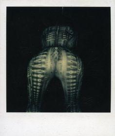 hr giger polaroid of debbie harry in bodysuit Arte Alien, Alien Art, Aliens Movie, Aliens And Ufos, Fantasy Posters, Fantasy Art, Hr Giger Art, Giger Alien, Pin Up Drawings