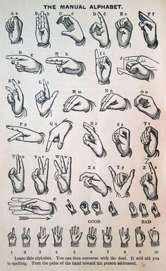 Types Of Sign Language  Sign Language Sign Language Chart And