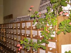 Систематичний каталог та картотека статей (2007 р.)