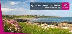 View of Balcarrick/Donabate Beach showing flowers, rocks, sand and sea. Dublin Ireland, Ireland Travel, Dublin Beach, Clean Beach, Short Trip, Beautiful Beaches, Things To Do, Tourism, Surfing