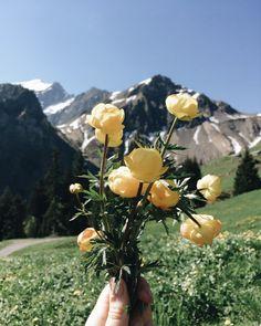 Good Hiking In Interlaken – Day Tours Top 5 – Switzerland North Country, Day Tours, Switzerland, Hiking, Young Women, Trekking, Walking
