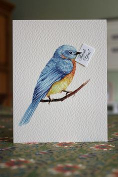 60 Ideas Bird Artwork Inspiration Bluebirds For 2019 Cute Birds, Pretty Birds, Beautiful Birds, Funny Birds, Bluebird Tattoo, Tattoo Bird, Tattoo Mom, Bird Sketch, Bird Artwork