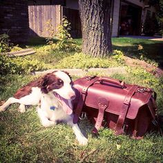 That's one happy puppy! | Saddleback Leather Co. | Side Pocket Duffel | 100 Year Warranty | $655