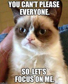 Grumpy Cat                                                                                                                                                     More