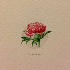 Day 147 : Peonies for Angie on her birthday. 22 x 25 mm. #365paintingsforants…