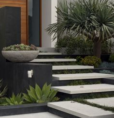 Ideas For Exterior Entrance Decor Front Entry - modern front yard landscaping ideas