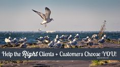 How to attract quality clients + customers so they choose YOU over the competition!