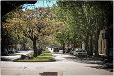 Paseo a San Pedro (Provincia de Buenos Aires)