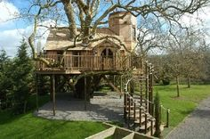 now this is a tree house....tarzan, eat your heart out!