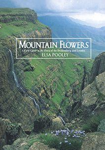 Elsa Pooley's Mountain Flowers