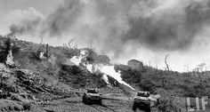 U.S. Flamethrower tanks Okinawa   History Wars