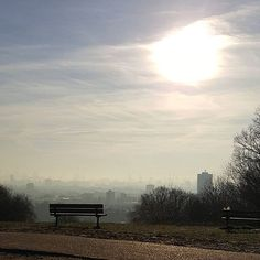 ..and breathe. Taking in the view from Kite Hill, Hampstead Heath, London.