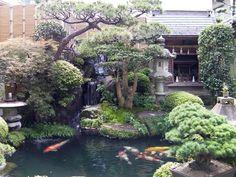 Danilo Ruocco 2.0: Fluttuare a Miyajima