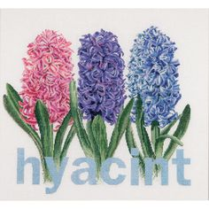 Thea Gouverneur counted-cross-stitch Kit Hyacinth On Aida