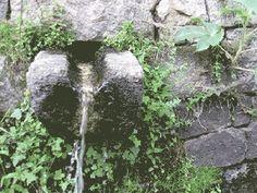 fontaine Corse Corsica gif
