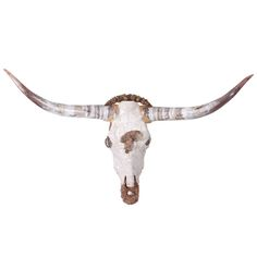 Longhorn Skull Sculpture #4 | From a unique collection of antique and modern wall-mounted sculptures at http://www.1stdibs.com/furniture/wall-decorations/wall-mounted-sculptures/