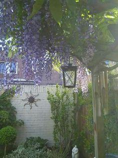 Onze fijne kleine tuin