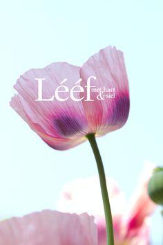 Lente/Spring Fotograaf: Hanneri de Wet www.leef.co.za Hart, Afrikaans, September, Magazine, Spring, Nature, Quotes, Flowers, Pictures