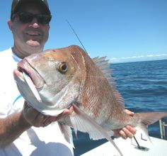 Using micro jigs under workups produces 8lb snapper
