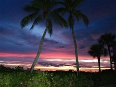 Bonita Springs, Florida.  Where you can get a real Florida sunset, and the beach is beautiful.    Google Image Result for http://media-cdn.tripadvisor.com/media/photo-s/01/4f/2d/ac/bonita-springs.jpg
