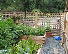 privacy fence ideas patio | ... for Garden Patio Fencing Remodel - Best Patio Design Ideas Gallery