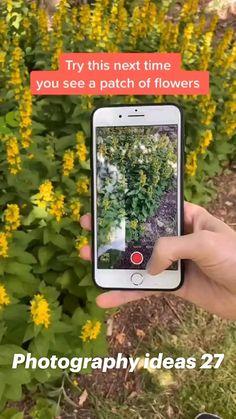 Photography Tips Iphone, Photography Basics, Photography Lessons, Photography And Videography, Photography Editing, Video Photography, Digital Photography, Photography Challenge, Inspiring Photography