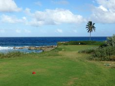 Greg Norman Course -- stunning. Maybe pack some extra golf balls... the ocean tends to steal them...