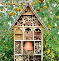 a garden home for beneficial insects! Craftsman Built Insect Hotel Decorative Wood House by Olivier Le Queinec, via Dreamstime a garden home for beneficial insects! Craftsman Built Insect Hotel Decorative Wood House by Olivier Le Queinec, via Dreamstime Diy Gardening, Organic Gardening, Vegetable Gardening, Bug Hotel, Bottle Garden, Beneficial Insects, Diy Garden Projects, Stock Foto, Winter Garden