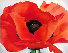 Georgia O'Keeffe Red Poppy painting for sale - Georgia O'Keeffe Red Poppy is handmade art reproduction; You can shop Georgia O'Keeffe Red Poppy painting on canvas or frame. Georgia Okeefe, Art Floral, Georgia O'keefe Art, Georgia O Keeffe Paintings, Art And Illustration, Red Poppies, Poppies Art, Poppy Flowers, Famous Artists