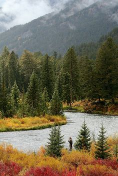 Fly Fishing - Montana
