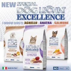 New Special Dog & LeChat Excellence