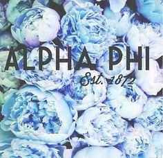 #APhi #AlphaPhi