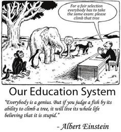 For a Fair Selection Everybody Has to Take the Same Exam Please Climb That Tree Our Education System Everybody Is a Genius but if You Judge a Fish by Its Ability to Climb a Tree It Will Live Its Whole Life Believing That It Is Stupid Albert Einstein Wisdom Quotes, True Quotes, Great Quotes, Motivational Quotes, Funny Quotes, Funny Memes, Inspirational Quotes, Quotes Pics, Motivational Pictures